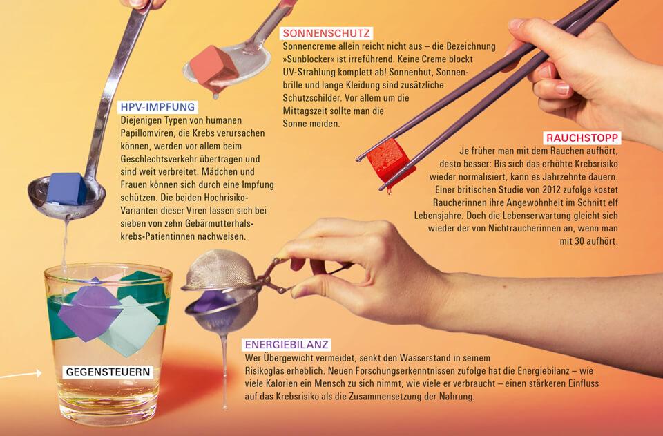 Daniela Leitner / Infografik Krebsrisiko / bild der wissenschaft / Detail Risiko für Krebs reduzieren