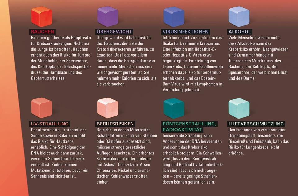 Daniela Leitner / Infografik Krebsrisiko / bild der wissenschaft / Detail Risikofaktoren