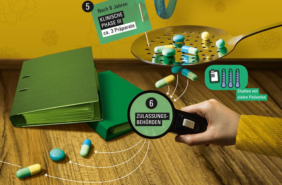 Daniela Leitner / Infografik Medikamente / bild der wissenschaft / Detail Zulassungsbehörden