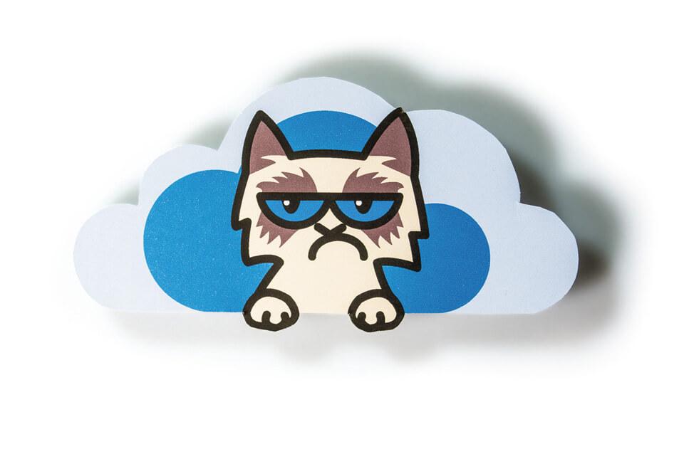 Titelthema Internet und soziale Medien / bild der wissenschaft / Teil 3: Gleich getaktet – Welchen Einfluss haben Online-Freunde? / Grumpy Cat Wolke