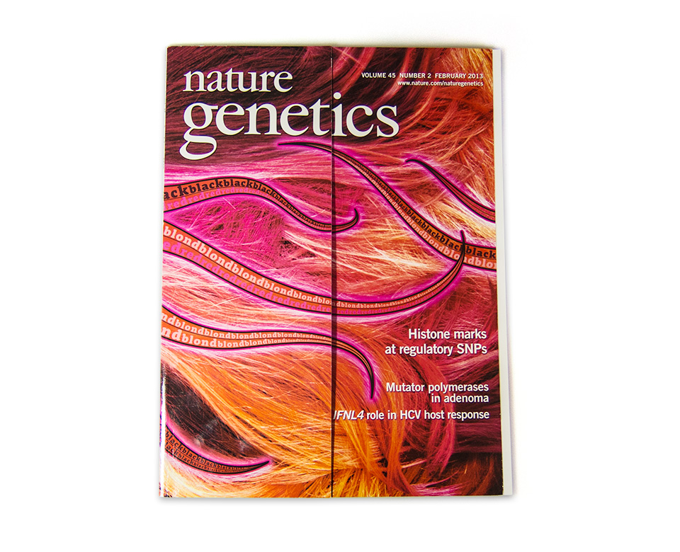 Nature Genetics / Coverserie / Daniela Leitner / Magazin Februar 2013 / Haarfarbe
