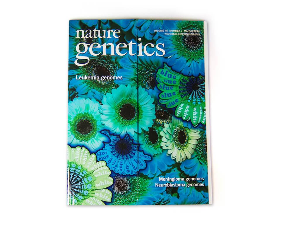 Nature Genetics / Coverserie / Daniela Leitner / Magazin März 2013 / Blütenblätter