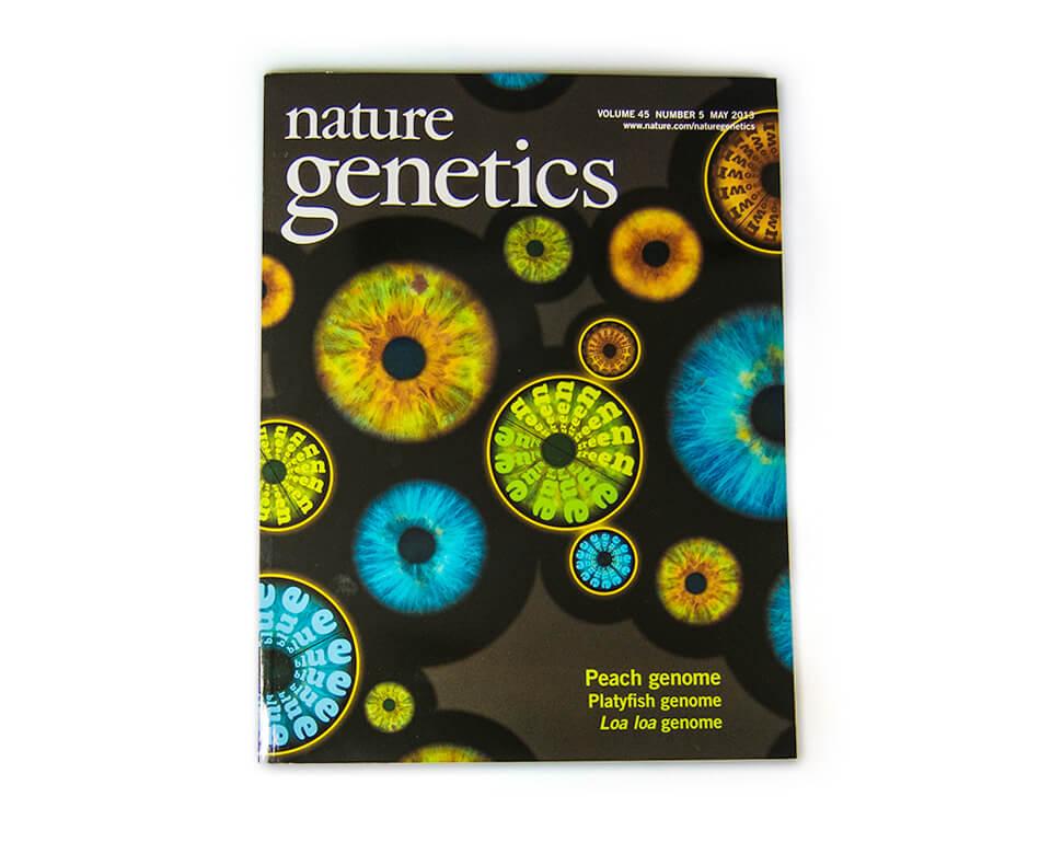 Nature Genetics / Coverserie / Daniela Leitner / Magazin Mai 2013 / Augenfarbe