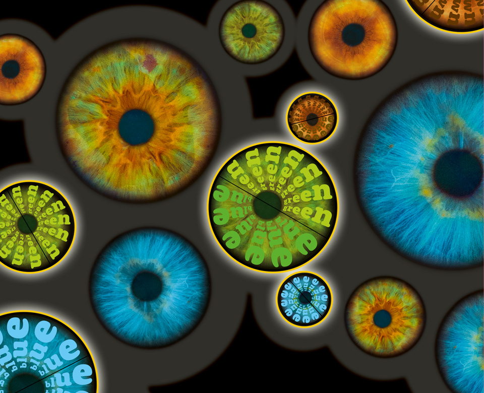 Nature Genetics / Coverserie / Daniela Leitner / Die Genetik der Augenfarbe