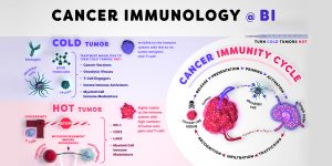 Infographic & Animation Cancer Immunology @ Boehringer Ingelheim
