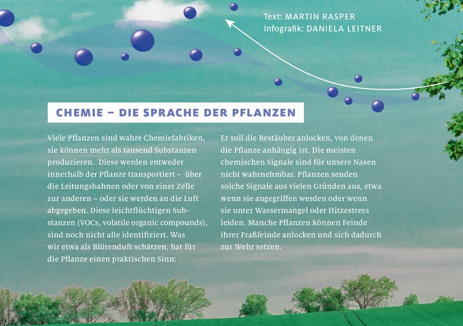 bild der wissenschaft, Ausgabe März 2019 / Infografik: Wie Pflanzen kommunizieren: Duftstoffe / Daniela Leitner