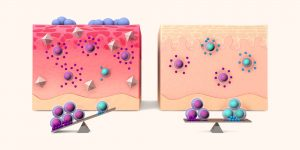 Infographic: Salt and the immune system